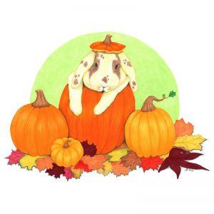 pumpkin_bunny_web_ready