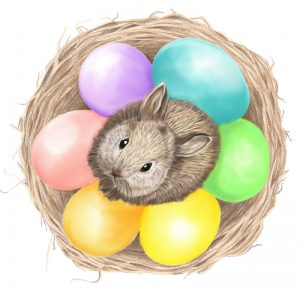 pygmy_easter_bunny_webready