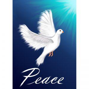 peace_dove_800px